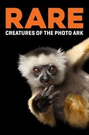 Rare: Creatures of the Photo Ark streaming vf