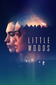 Little Woods streaming vf