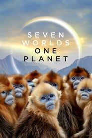 Seven Worlds, One Planet streaming vf