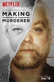 Making a Murderer streaming vf
