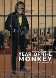 Year of The Monkey streaming vf