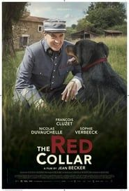 The Red Collar streaming vf
