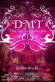 DMT: The Spirit Molecule streaming vf