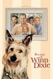 Because of Winn-Dixie streaming vf