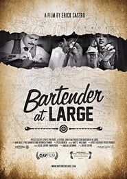 Bartender At Large streaming vf