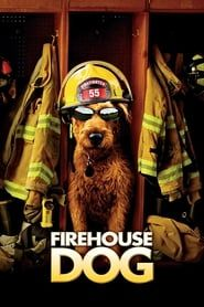 Firehouse Dog streaming vf