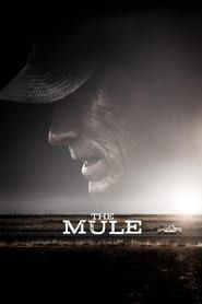 The Mule streaming vf
