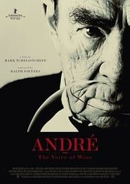 André: The Voice of Wine streaming vf