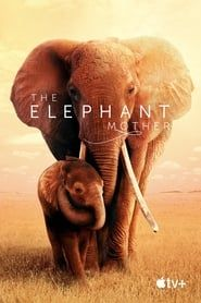 The Elephant Mother 2019