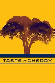Taste of Cherry streaming vf