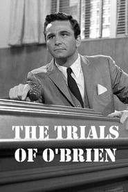 The Trials of O'Brien streaming vf