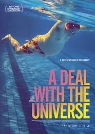 A Deal With The Universe streaming vf