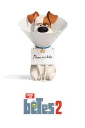 Comme des bêtes 2 2019 film complet