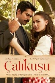 Çalıkuşu streaming vf