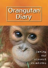 Orangutan Diary streaming vf