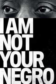 I Am Not Your Negro streaming vf