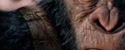 La Planète des singes : Suprématie online