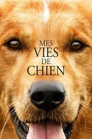 Mes vies de chien 2016