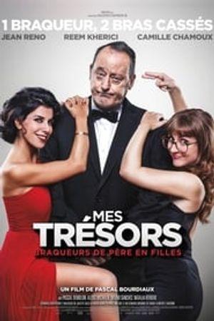 Mes trésors 2017 film complet