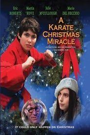 A Karate Christmas Miracle