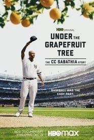 Under The Grapefruit Tree: The CC Sabathia Story