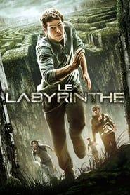 Le Labyrinthe 2020