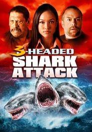 L'attaque du requin a 3 têtes