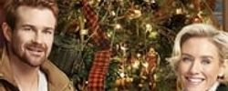 Romance at Reindeer Lodge online