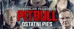 Pitbull. Ostatni pies online