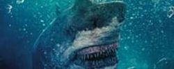 Toxic Shark online