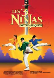 Ninja Kids 2 : Les 3 Ninjas contre-attaquent