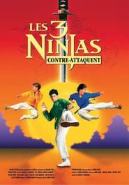 Ninja Kids 2 : Les 3 Ninjas contre-attaquent
