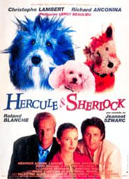 Hercule et Sherlock streaming