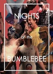 Nights of the Bumblebee streaming