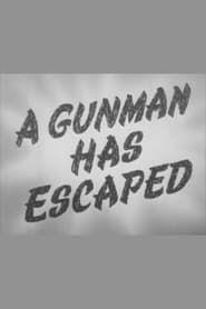 A Gunman Has Escaped