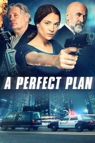 A Perfect Plan 2011