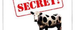 Top secret ! online
