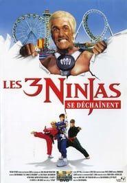 Ninja Kids 4 : Les 3 Ninjas se déchaînent