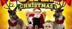 Puppy Star : c'est Noël ! online