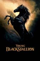Young Black Stallion Full movie