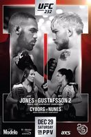 UFC 232: Jones vs. Gustafsson 2 Full movie