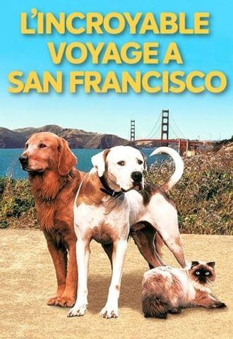 L'incroyable voyage II : À San Francisco en streaming