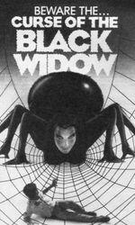 La Malédiction de la veuve noireen streaming
