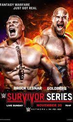 WWE Survivor Series 2016en streaming
