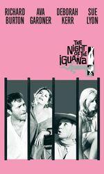 La nuit de l'iguaneen streaming