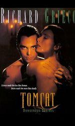 Tomcat: Dangerous Desiresen streaming