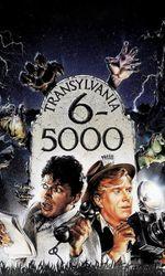 Transylvania 6-5000en streaming
