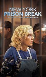 NY Prison Break: The Seduction of Joyce Mitchellen streaming