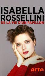 Isabella Rossellini - De la vie d'un papillonen streaming