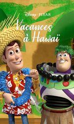 Vacances à Hawaïen streaming
